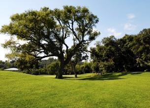The Provençal Golf