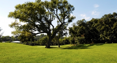Le Provençal Golf