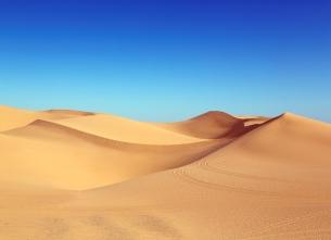 Conference « Les trésors perdus du Sahara occidental »