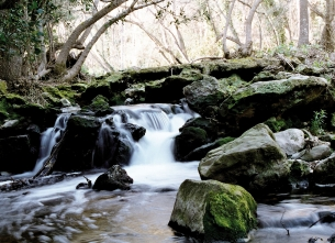 Parco naturale di Brague