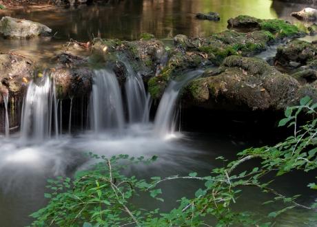 Parc de La Brague
