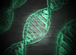 Conferenza L'uso della diversità genetica e della biotecnologia nell'allevamento delle piante: continuità o rivoluzione?